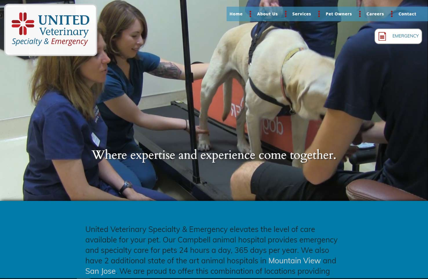 Specialty Veterinary Practice Website